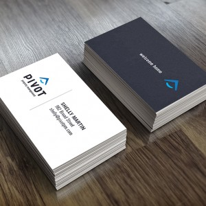 WSPort_PivotBusinessCards